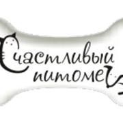 "Зоосеминар ""БЭБИ ДОГ"" с пеленок фото"