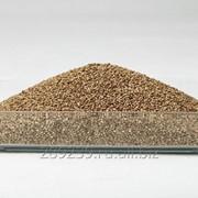 Семена конопляные фото