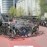 Прокат, аренда велосипедов фото