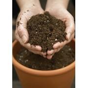 Анализ почвы на плодородие (анализ грунта тепличного) фото