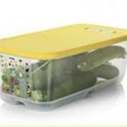 """Пластиковые контейнеры""""Умный холодильник""""(6,1л) фото"""