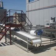 Линии переработки кукурузы, оборудование для производства консервированной кукурузы фото