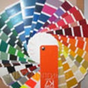 Покраска красками порошковыми фото