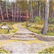 Озеленение в Крыму и сопутствующиуе строительные работы фото