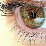 Лечение заболеваний органов зрения фото