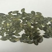 Ядро семечки тыквы. Сорт Голосемянная. фото