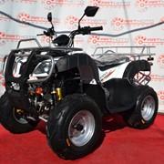 Квадроцикл Bashan BS150ATVU-15 фото