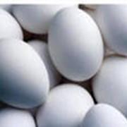 Яйца куриные С1, С2, С0 - категории фото