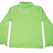 19-03-15(28/110) - Водолазка детская для девочек фото