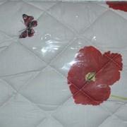 Одеяло стеганое шерстяное, Код: 802 стеганое фото