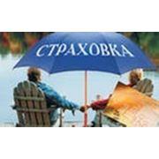 Полис путешествующим по России и СНГ фото