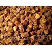 Перга пчелиная фото