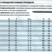 """Шуруп с полукруглой головкой """"TwinSpeed"""" в Украине, Купить, Цена, Фото фото"""