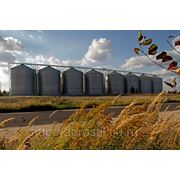 Строителство,проектирование элеваторов и зернохранилищ. фото