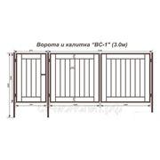 Ворота и калитка «ВС-1″(3 м) фото