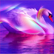 Стразы Чарующая лебедь. Частичная выкладка, 54x54, Leisuretime фото