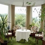 Фитодизайн и зимние сады фото