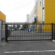 Ворота консольные для территории ( дворовые ) фото