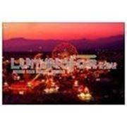 Постер в рамке «Парк развлечений «, формат А4, светится в темноте фото