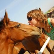 Прогулочные конные маршруты фото