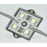 Светодиодный модуль 4SMD5050 72Lm фото