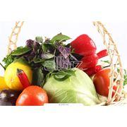 Продукт сельскохозяйственный фото