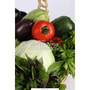 Продукция сельского хозяйства фото
