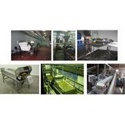 Технологическое оборудование для переработки фруктов и овощей фото