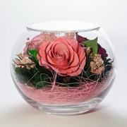 Роза в стекле tm FIORA BS-Rpb-34305 фото