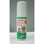 Спрей Лучший Друг Удаляю запах и пятна для собак и кошек 100мл Api-San фото