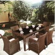 Стол стулья техно Ратанг фото