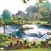 Гидроизоляция коттеджей в Астане фото