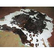 Выделанные кожи крупного рогатого скота фото