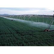 Системы ирригационные сельскохозяйственные фото