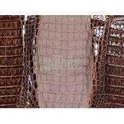 Производство кожи Узбекистан фото