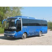 Автобусы Zhong Tong фото