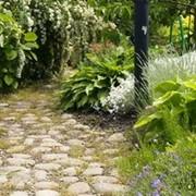 Садовое мощение фото