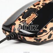 Манипуляторы мышь фото