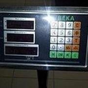 Весы товарные платформенные (влагозащищенные) до 300кг. фото