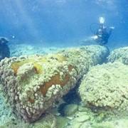 Дайвинг-тур в Кейсарии - Средиземное море фото