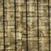 Профнастил С-21 х 1000–А,В ECOSTEEL фото