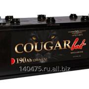 Аккумулятор COUGAR 190А/ч Ca/Ca (513-223-215) ток 1200А EURO фото