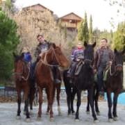 Конные и пешие походы, Автомобильные путешествия, Конный туризм фото