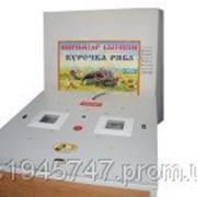 Автоматический бытовой инкубатор Курочка Ряба 80 O-MEGA фото