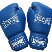 Перчатки боксерские 10 oz фото