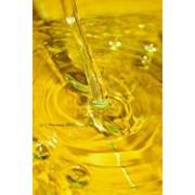 Масло-сырец нерафинированное оптом фото