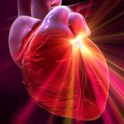 Лечение сердечно-сосудистых заболеваний фото