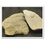 Глины формовочные бентонитовые фото