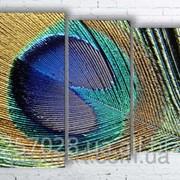 Модульна картина на полотні Перо павича код КМ100130-004 фото