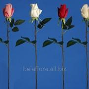 """Цветок искусственный """"Роза прорезиненная"""" микс окрасок арт. LY016 фото"""